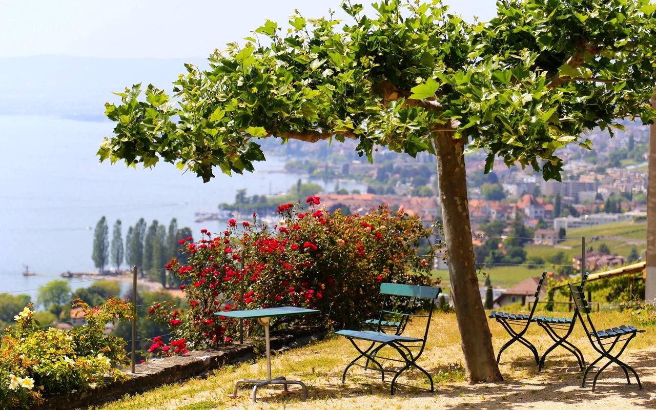 In den Lavaux Weinbergen am Genfer See