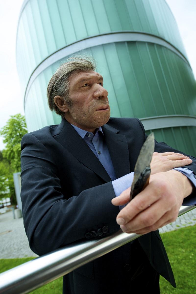 Neanderthal Museum, Mr. 4%