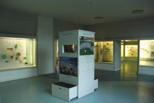 Der Botanische Garten Berlin, Botanisches Museum, Dauerausstellung