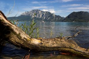 Blick über den Attersee in Österreich