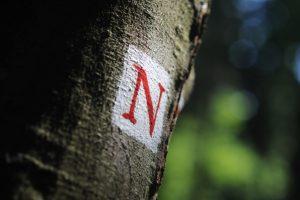 Zeichen des Nibelungensteigs - Nibelungensteig
