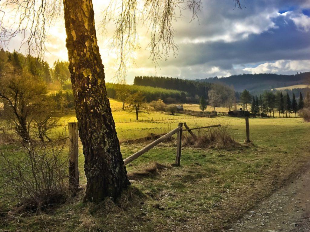 Landschaft bei Brilon - Rothaarsteig