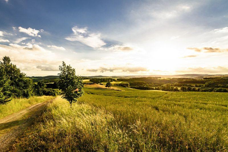 Landschaft bei Kürbitz - Vogtland Panorama Weg