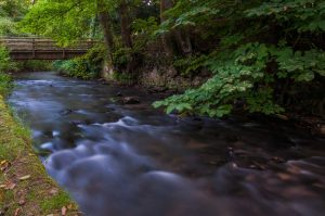 Der Fluss Düssel im Neanderthal - Am Bergischen Weg