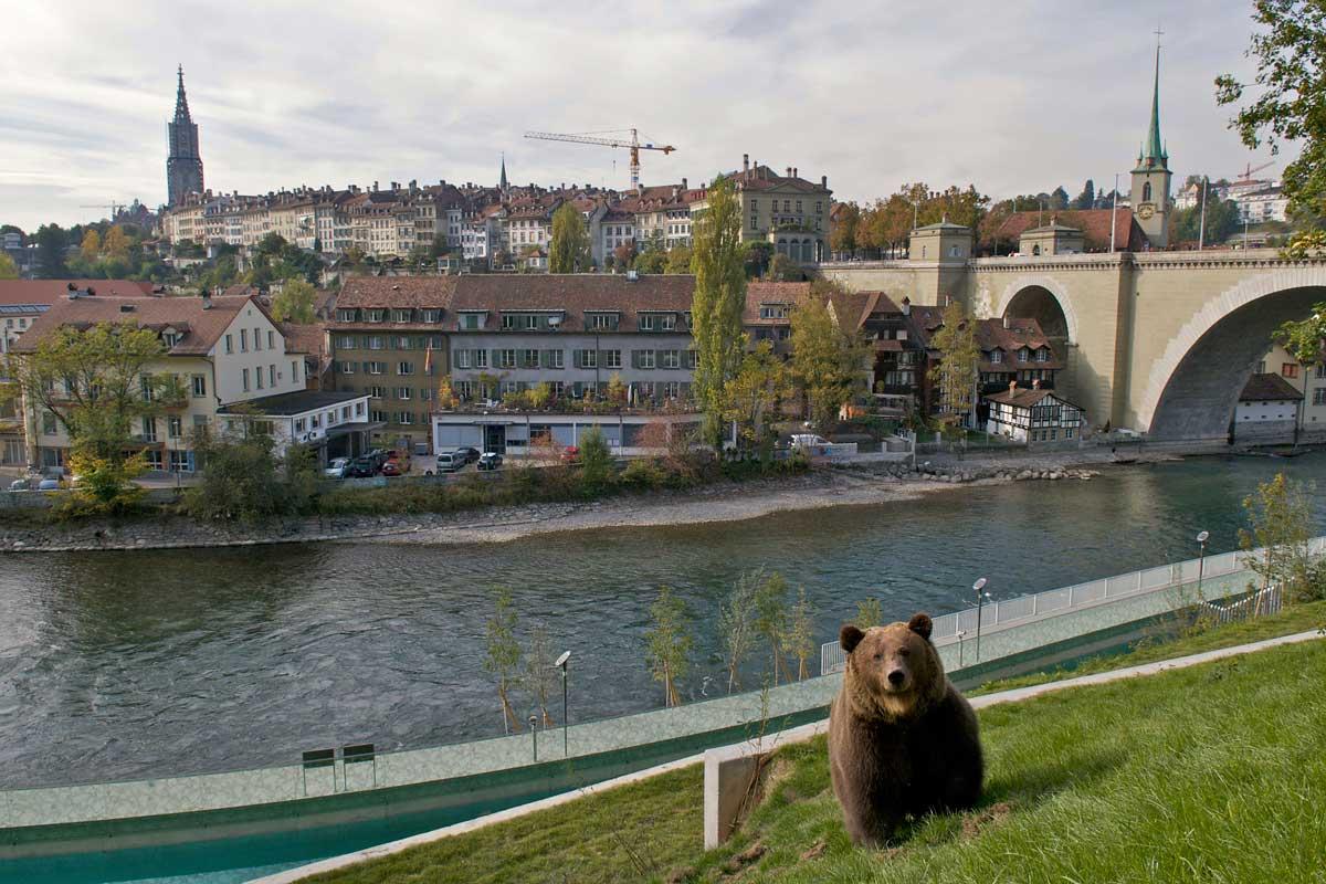 BärenPark in Bern