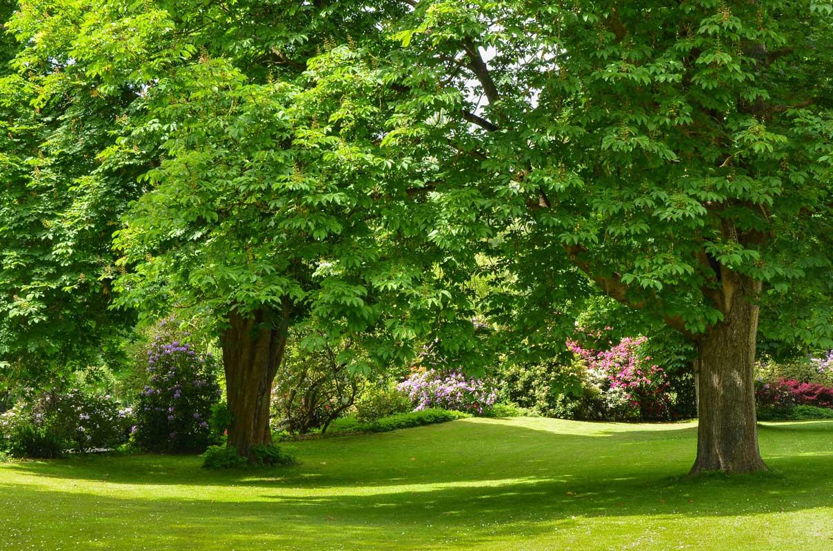 Luisenpark, Mannheim - Parks und Gärten Deutschlands