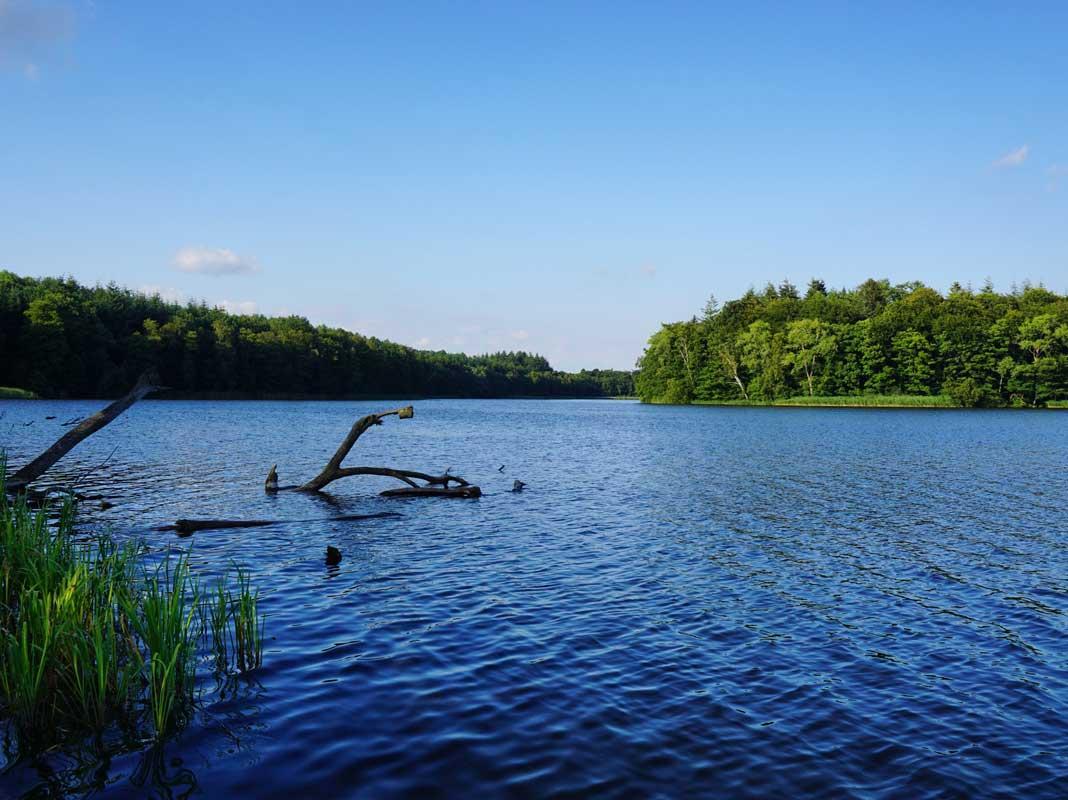 Biosphärenreservat Schaalsee - Radweg Hamburg-Rügen