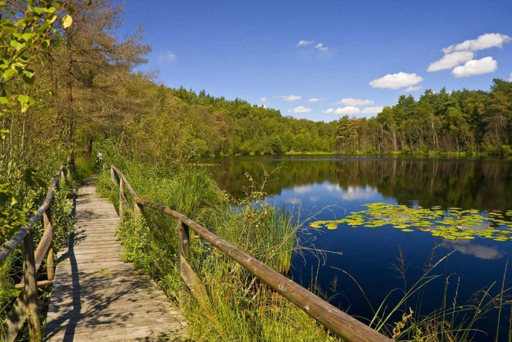 Müritz-Nationalpark - Mecklenburgische Seen-Radweg