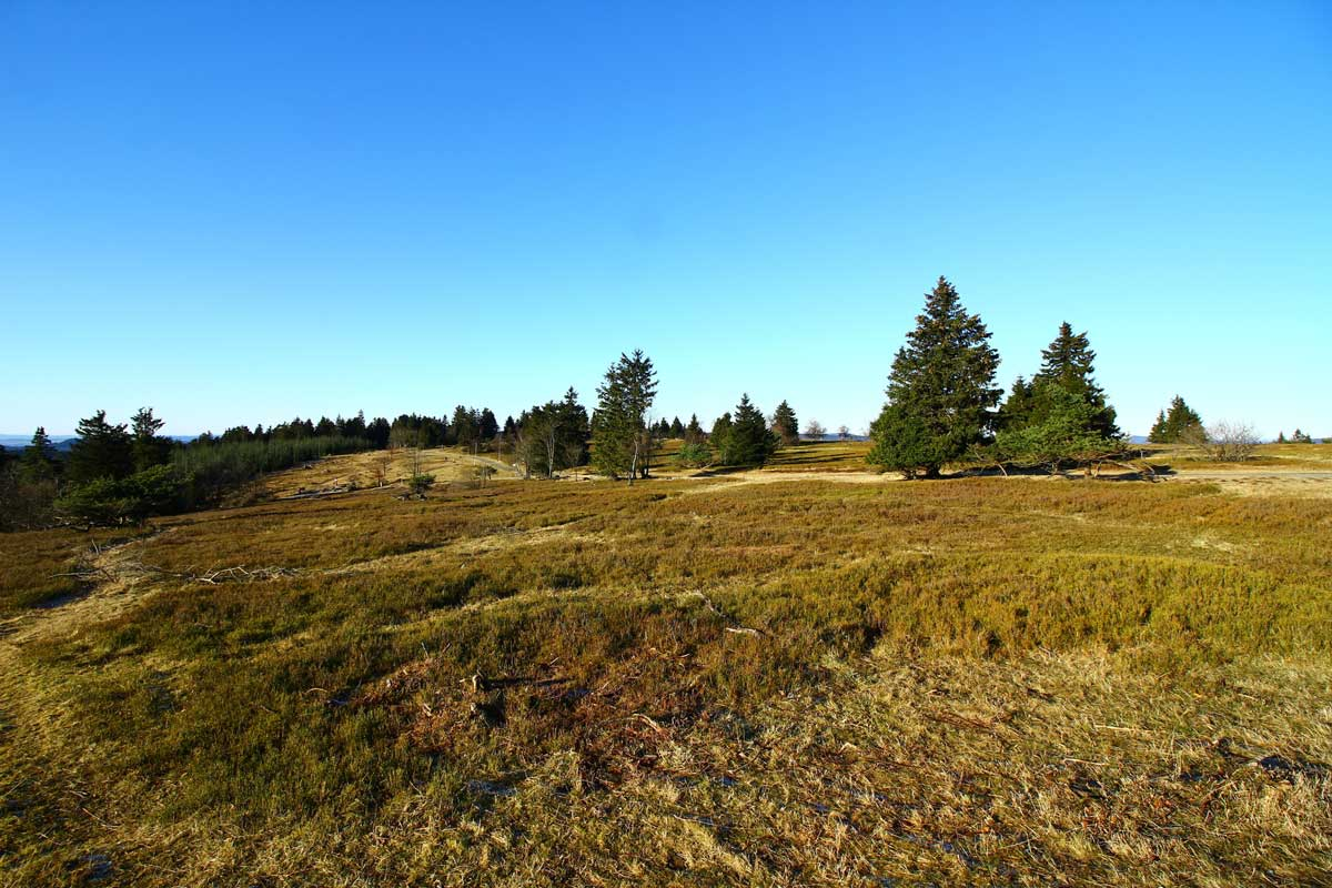 Kahler Asten - Sauerland-Höhenflug