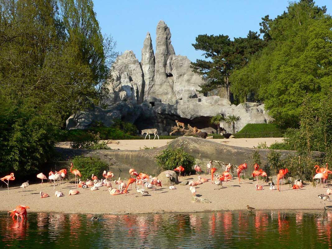 Tierpark Hagenbeck, Afrika-Panorama - Zoos Deutschland