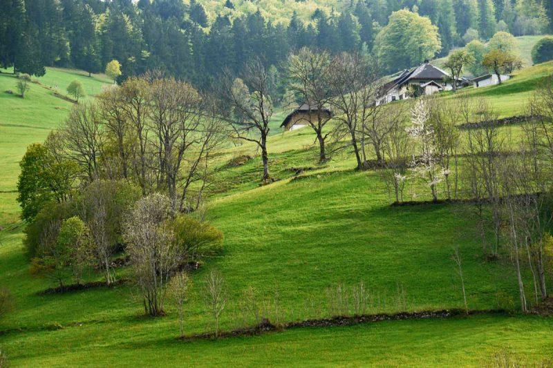 Südschwarzwald - Schluchtensteig