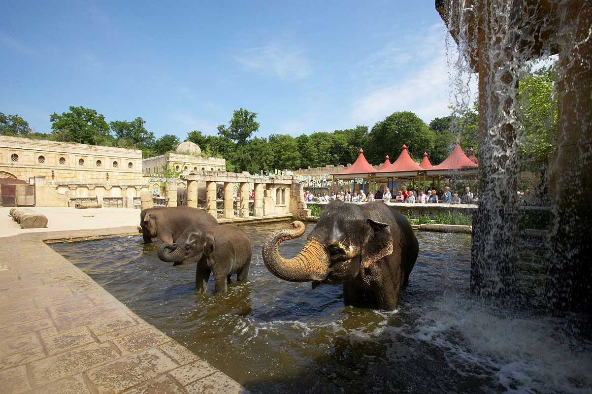 Dschungelpalast im Zoo Hannover - Zoos Deutschland