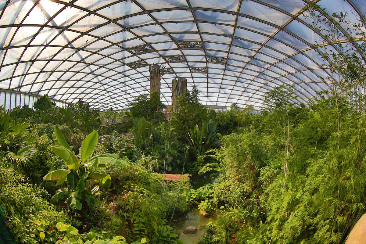 Tropenerlebniswelt Gondwanaland im Zoo Leipzig - Zoos Deutschland