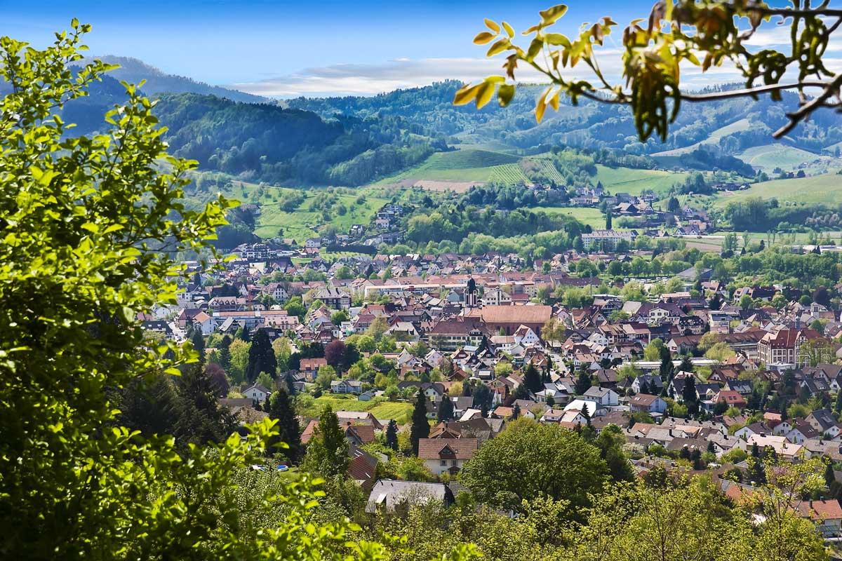 Blick auf Oberkirch - Ortenauer Weinpfad