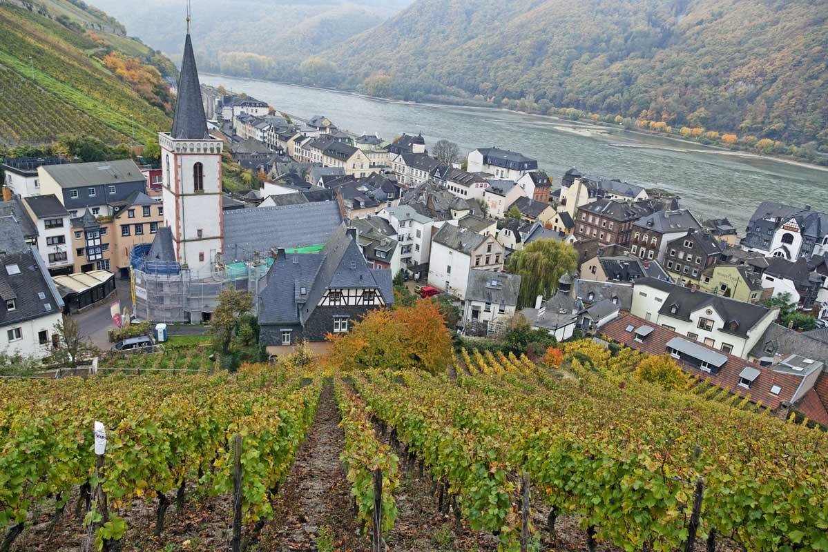 Assmannshausen mit Pfarrkirche Heilig Kreuz - Rheingauer Rieslingpfad