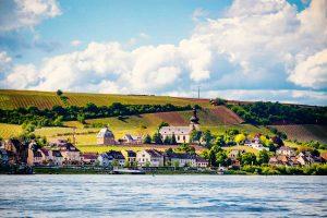 Blick auf Nierstein - RheinTerrassenWeg