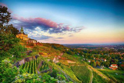 Blick auf Radebeul - Der Sächsische Weinwanderweg