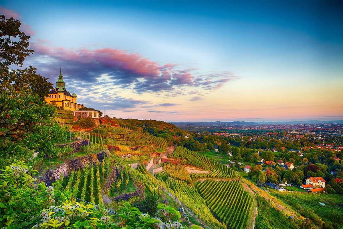 Blick auf Radebeul - Der Sächsische Weinwanderweg - Top-Reiseziele