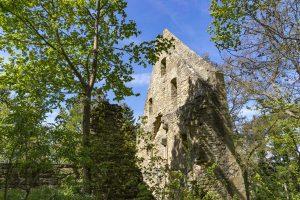 Klosterruinen der Hildegard vo Bingen auf dem Disibodenberg - Weinwanderweg Rhein-Nahe
