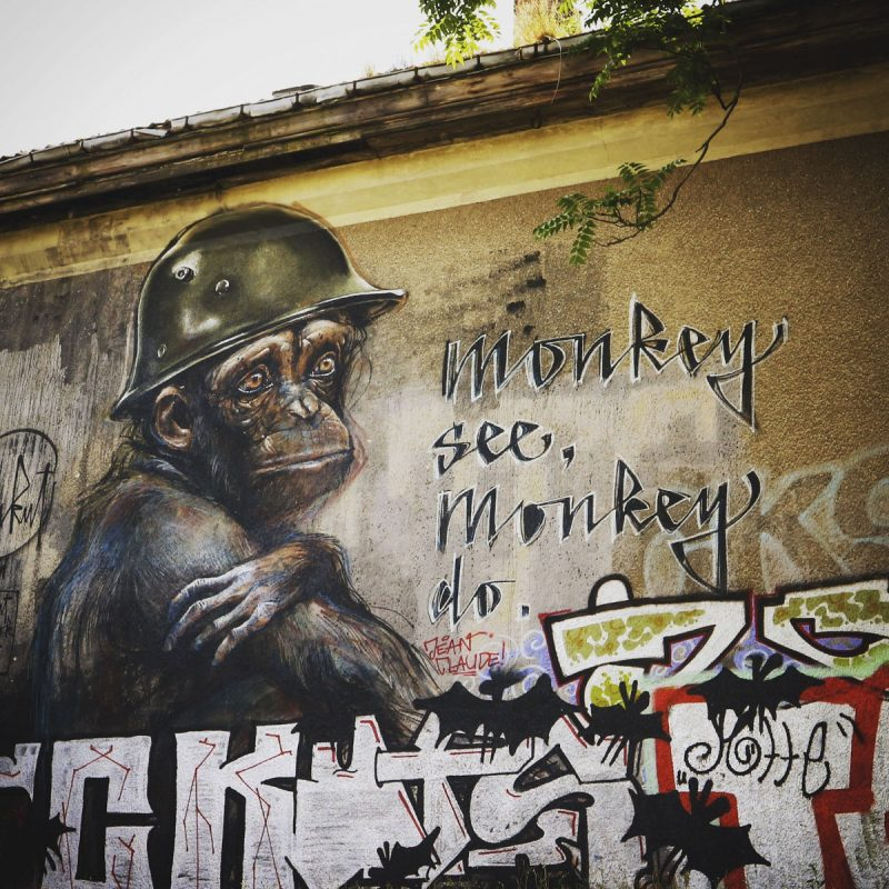 Monkey see, monkey do - Streetart Berlin