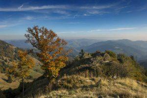 Blick vom Belchen ins Kleine Wiesental - Westweg