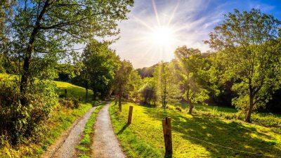 Wandern - Fernwanderwege