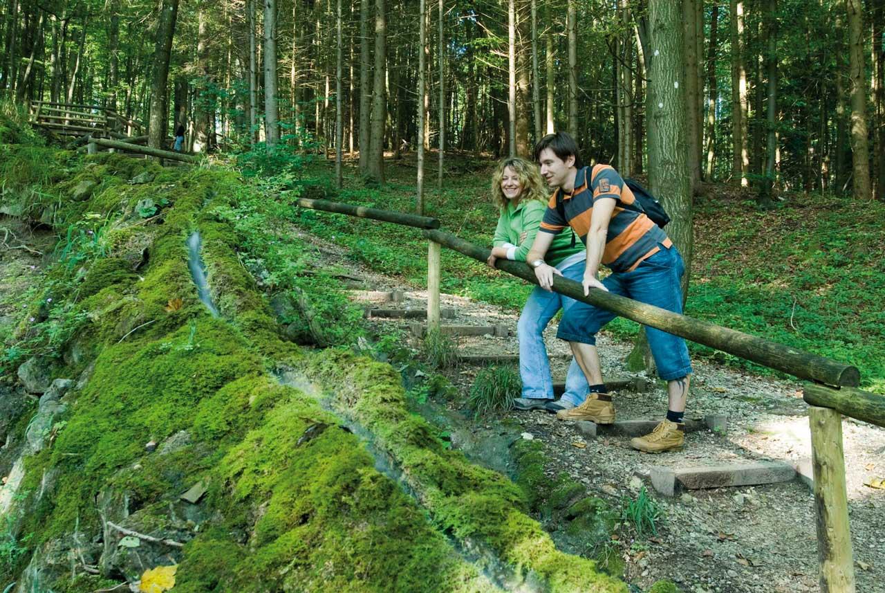 Steinerne Rinne bei Wolfsbronn - Frankenweg