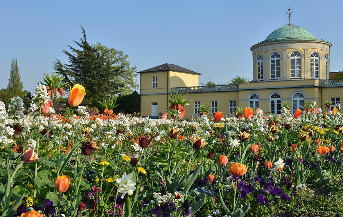 Berggarten Hannover