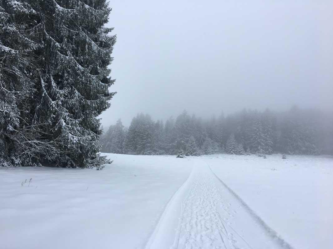 Unterwegs auf dem Premium-Winterwanderweg Wintermärchen in Albstadt