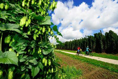 Niederbayerntour in der Hallertau