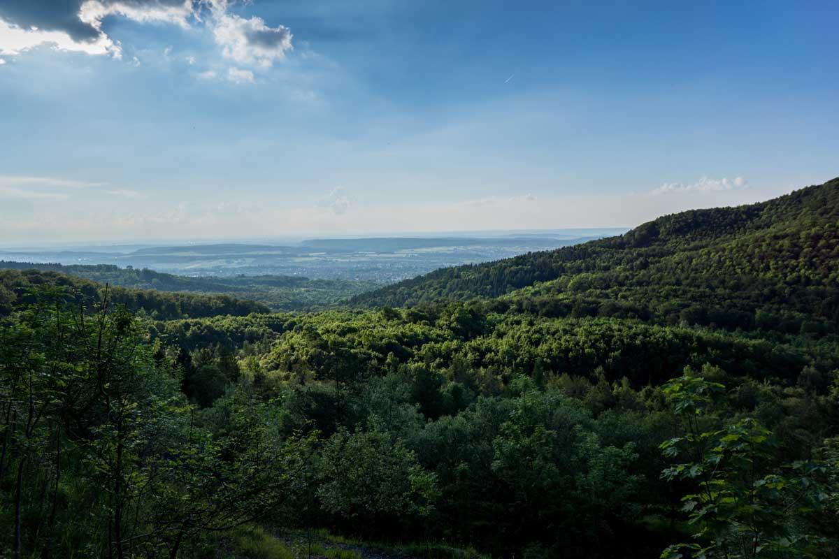 Wälder am Albrand - Ostweg