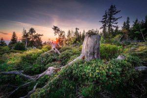 Nordschwarzwald Sonnenuntergang - Ostweg