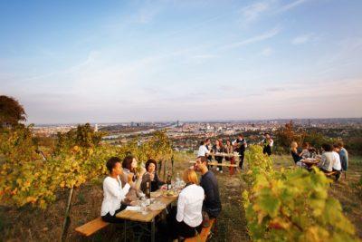 Weinwandertag Wien