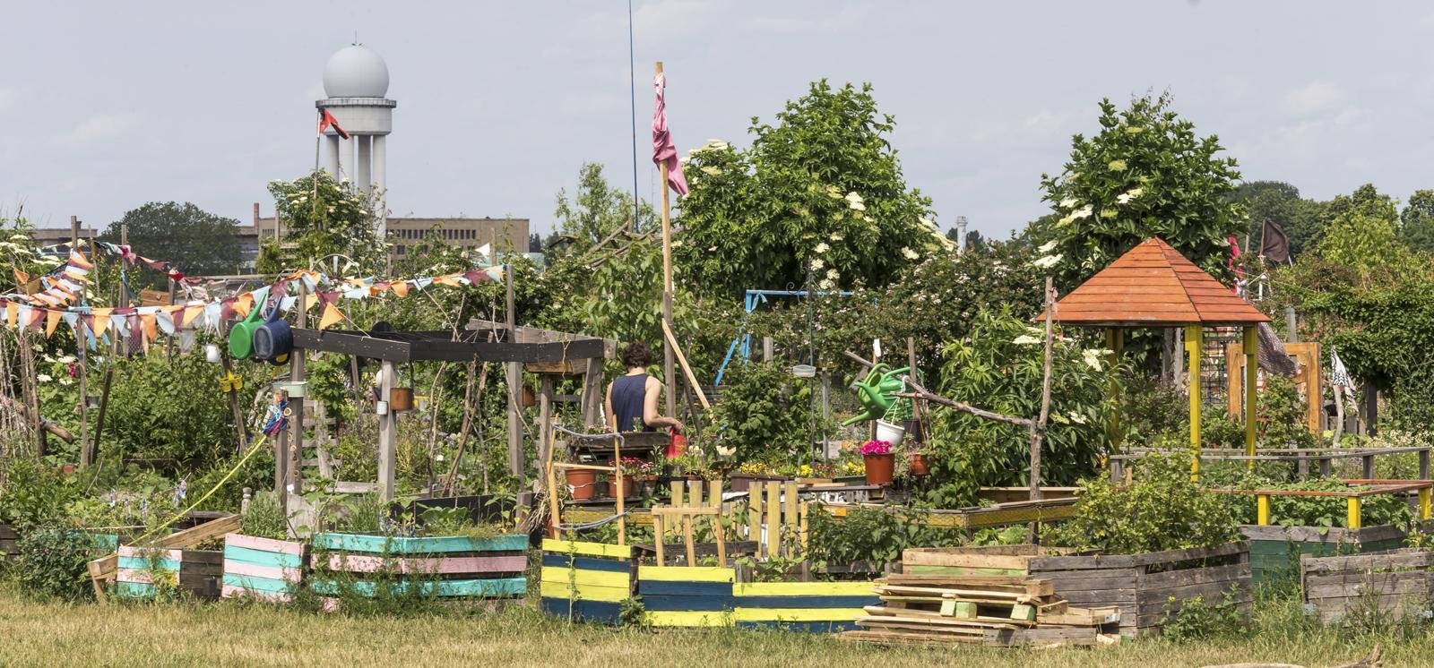 Urbane Gärten auf dem Tempelhofer Feld in Berlin
