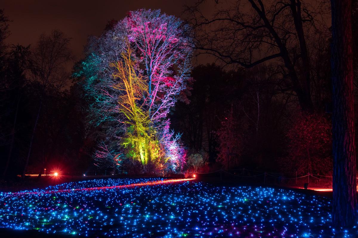Christmas Garden Berlin, Lichtermeer