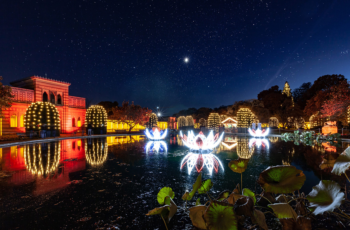 Christmas Garden Stuttgart, Seerosenteich