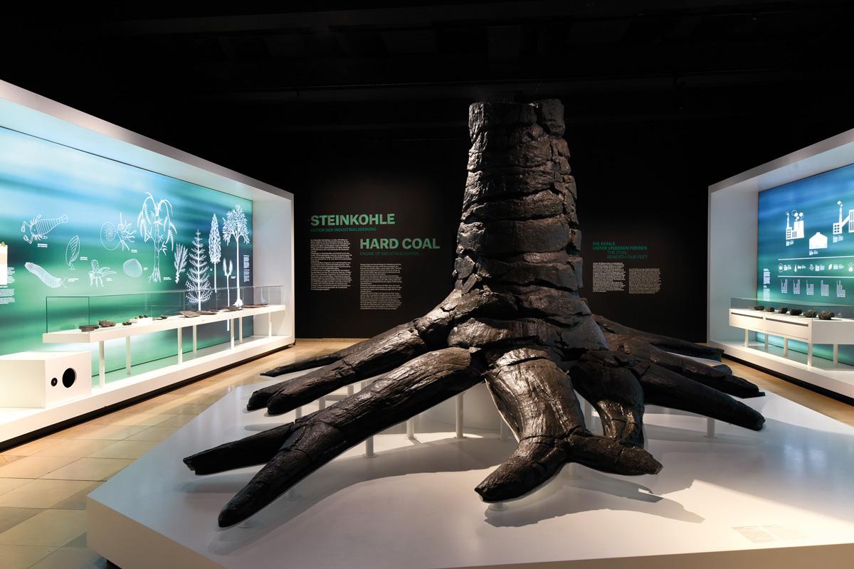 """Blick auf den Stammrest eines Schuppenbaumes aus dem Karbonzeitalter (ca. 306 Mio. Jahre) im Rundgang """"Steinkohle"""", Deutsches Bergbau-Museum"""