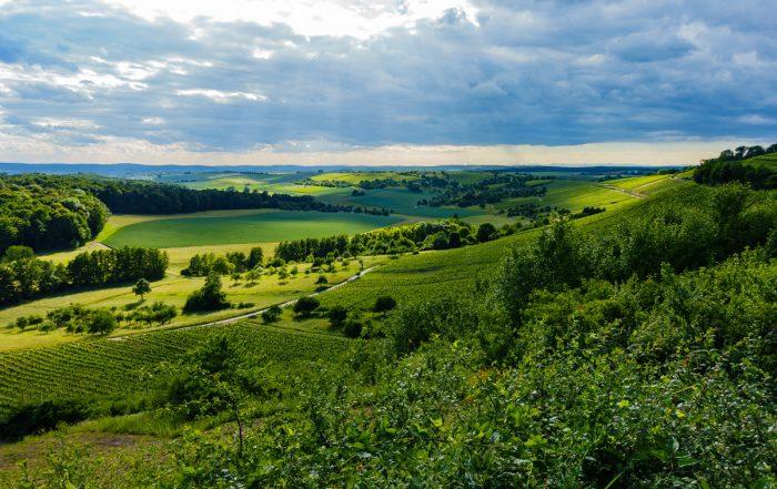 Landschaft Stromberg - Eppinger Linienweg
