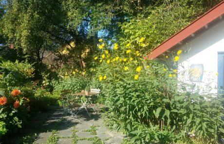Garten auf der Alpaka Adventures Ranch in Guggenhausen