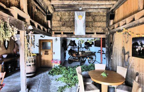 Alpaka Bar und Scheune