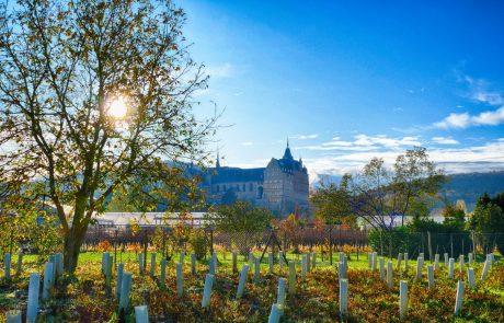 Ehemaliges Kloster in den Weinbergen bei Bad Neuenahr-Ahrweiler