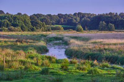 Landschaft im Eidertal - Eidertal-Wanderweg