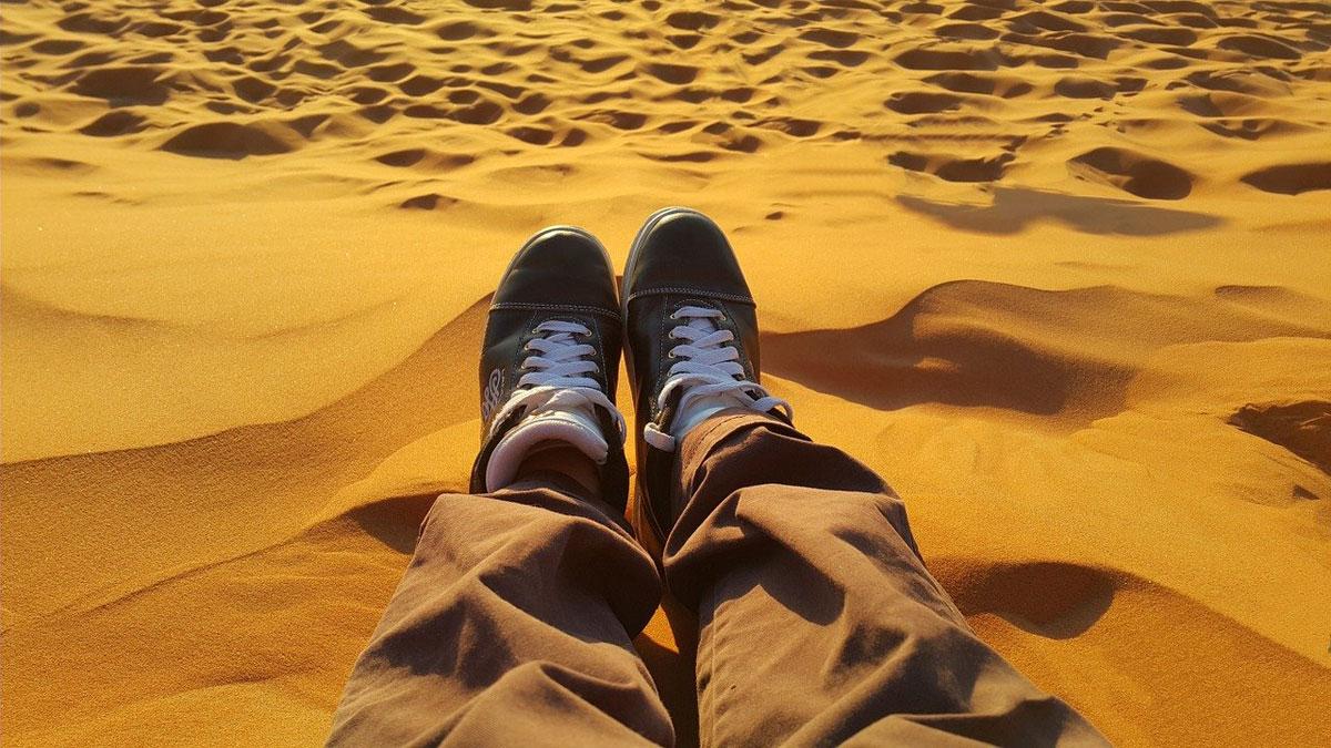 Wüste Wildnis