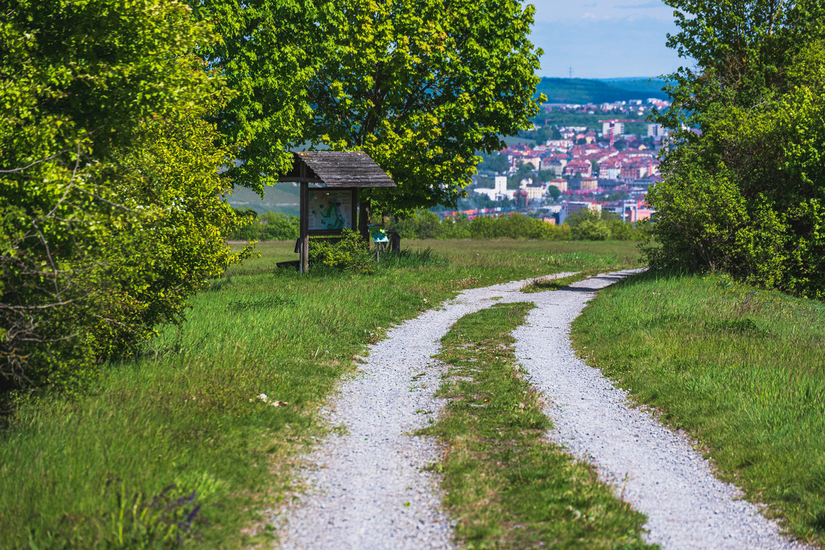 Wanderweg bei Würzburg