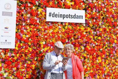 Blumenwand Potsdam