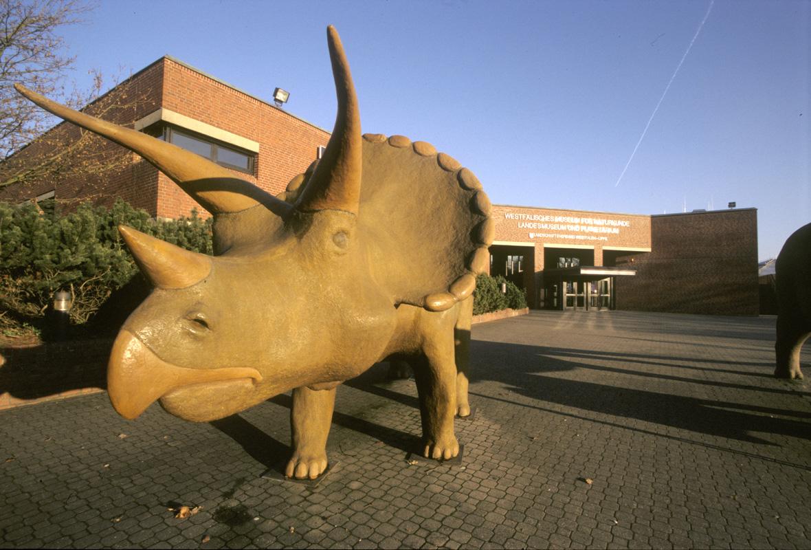 Naturkundemuseum Münster