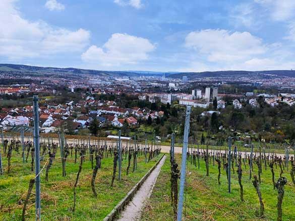 Ausblick vom Burgholzhof