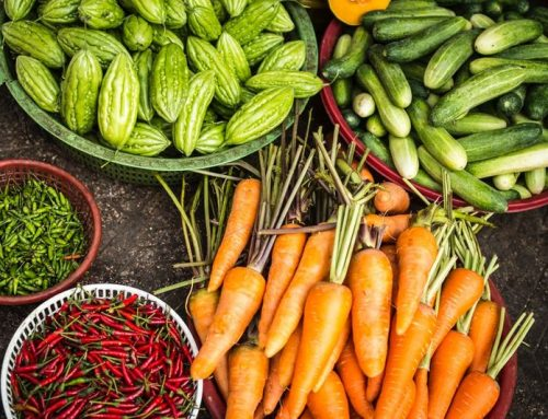 """""""Clever Ackern"""":  Unternehmen vermittelt Erntehelfer an existenzbedrohte Bauern"""