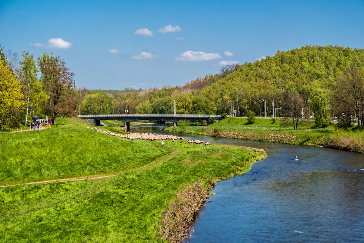 Zwickauer Mulde mit Paradiesbrücke - Mulderadweg