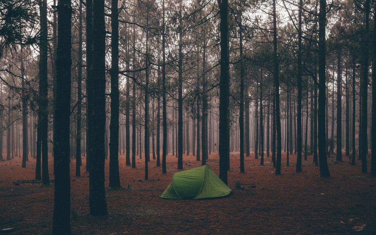 Wildcampen